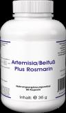 Artemisia/Beifuß